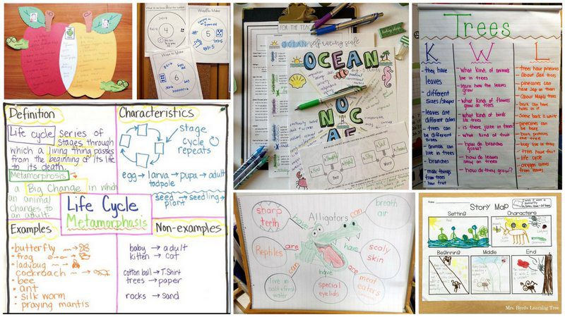 Collage of Graphic Organizers