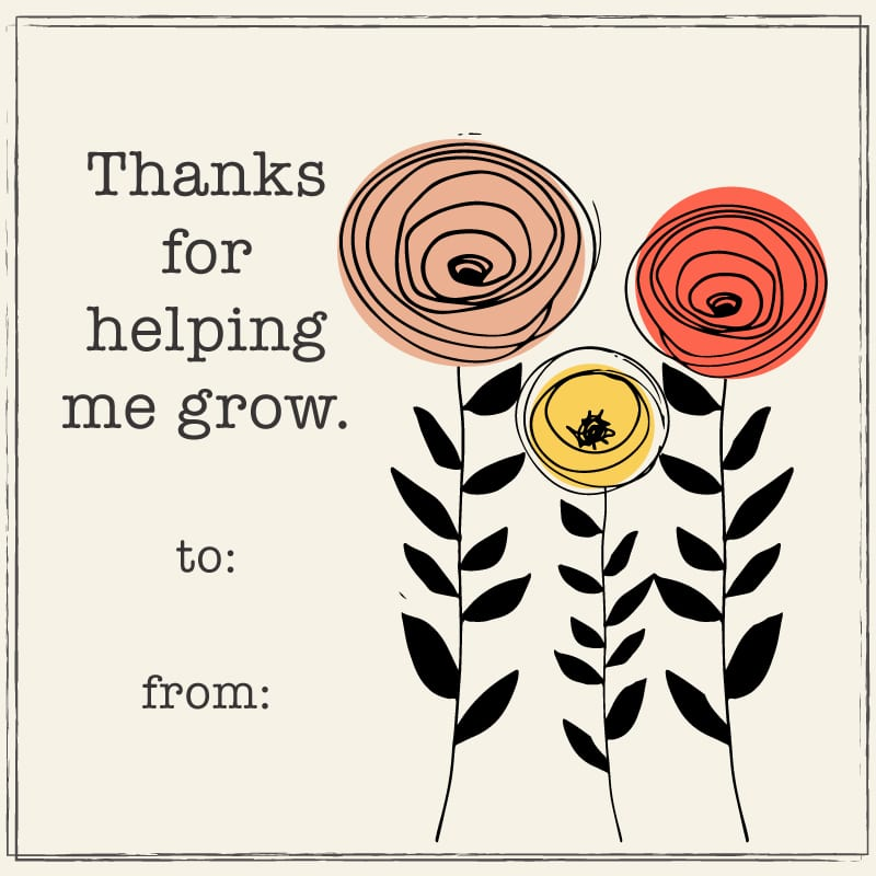 School Thank You Cards For Custodians Librarians And Other Staff We