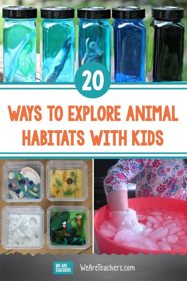 20 Wild Ways to Explore Animal Habitats With Kids