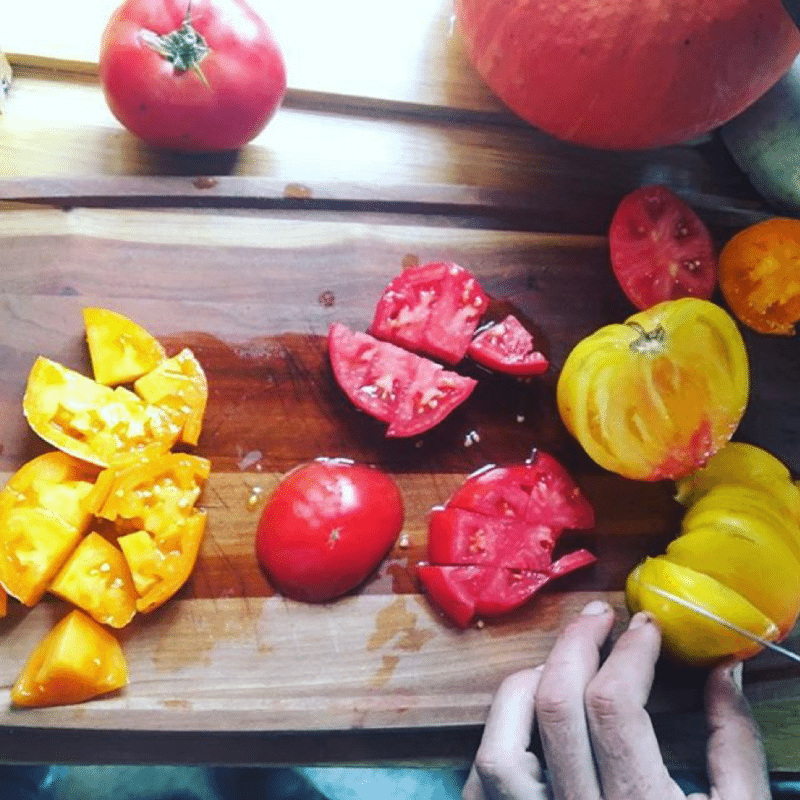 Hands cutting brightly colored tomatoes – Professional Development for Teachers