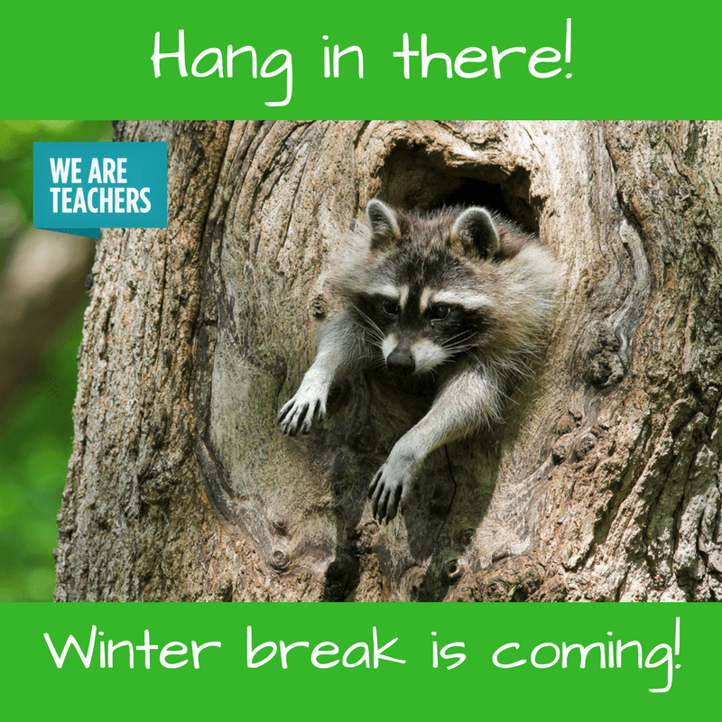 18 Hilarious Winter Break Memes Only A Teacher Will Understand