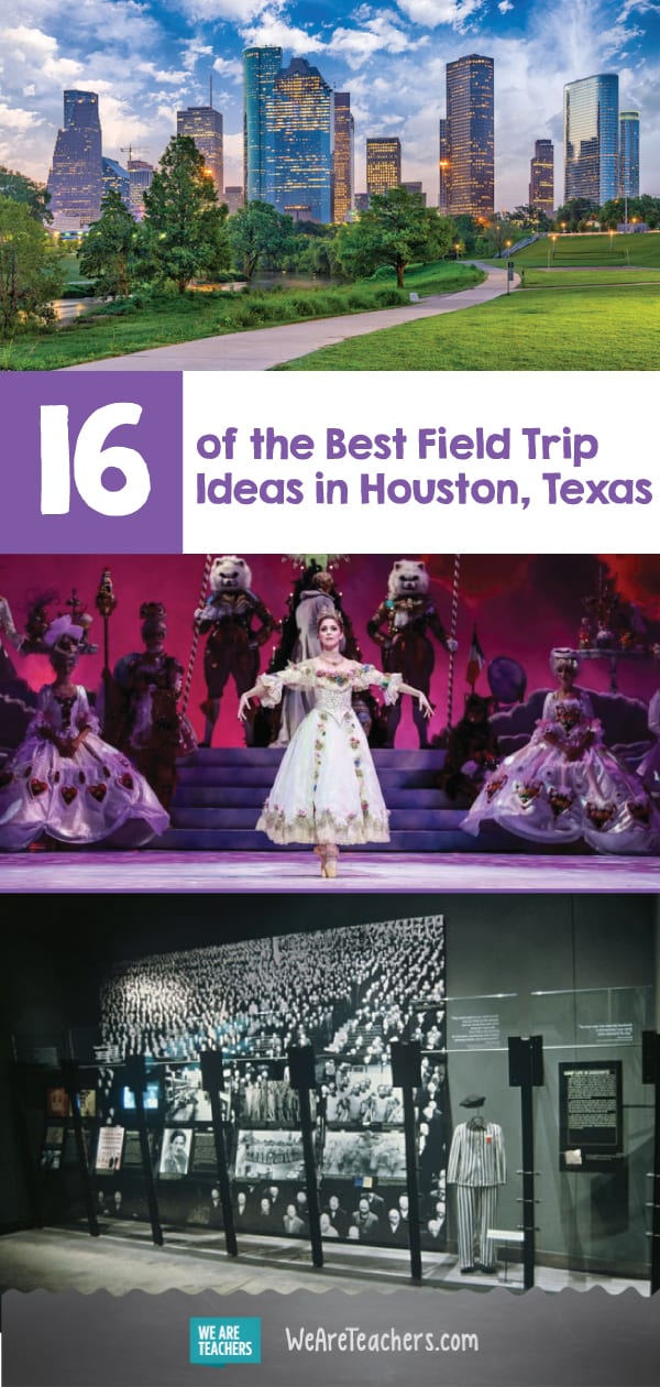 16 of the Best Field Trip Ideas in Houston, Texas