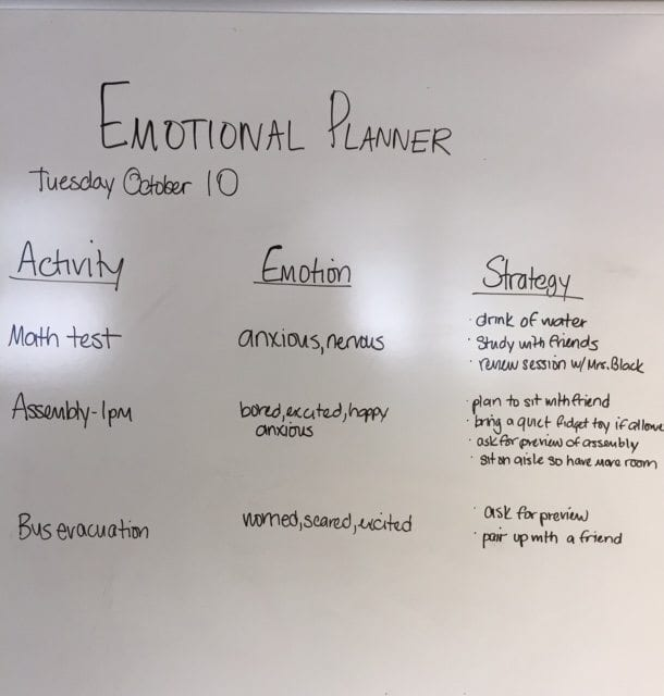 Teach Emotional Regulation