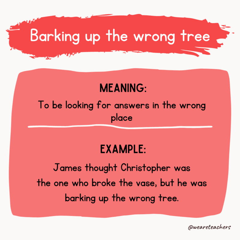 Barking up the wrong tree--idioms of the day
