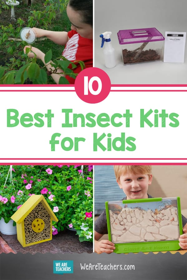 10 Insect Kits to Help Kids Study Bugs Up Close
