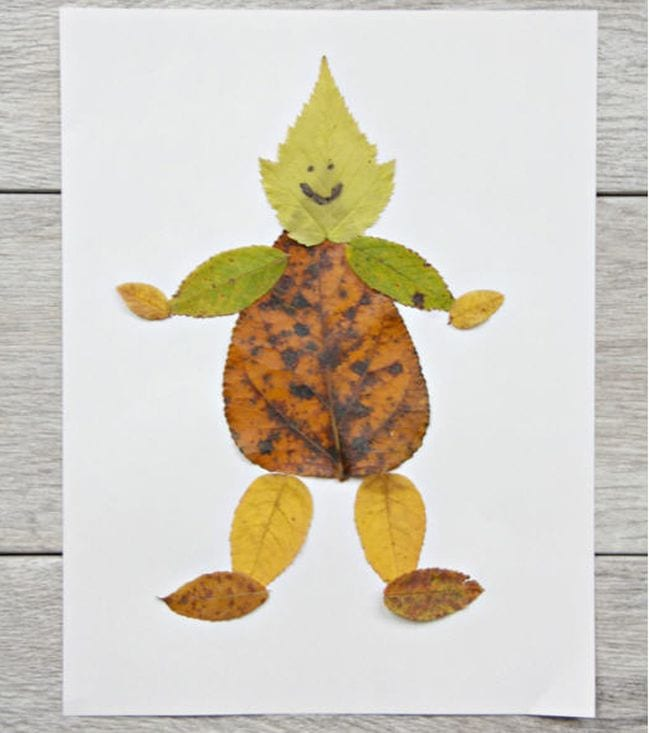 Variety of fall leaves put together to make a figure of a person