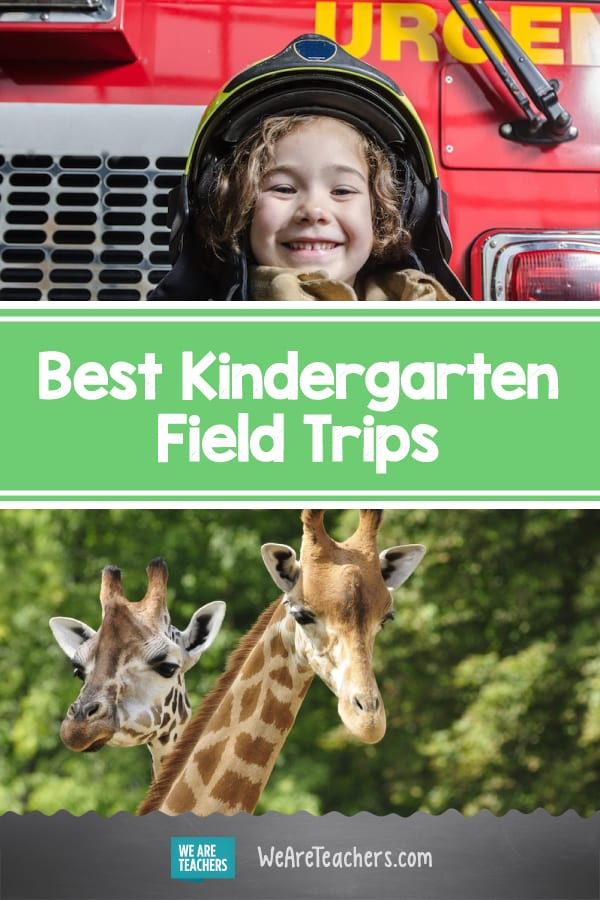 The Best Kindergarten Field Trips (Both Virtual and In-Person!)