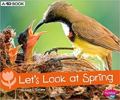 Book Cover for Let's Look at Spring; example of nonfiction spring books for kids