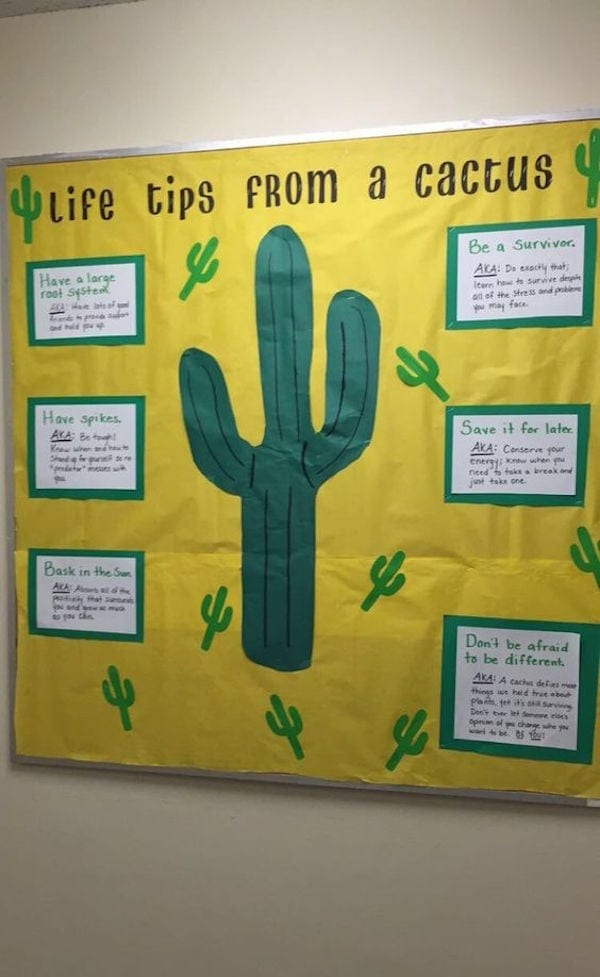 """Yellow school """"life tips"""" wall display featuring cactus design"""