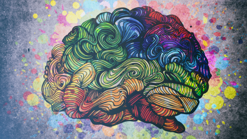 How Science Is Rewiring Dyslexic Brain >> How Teachers Can Rewire A Struggling Reader S Brain