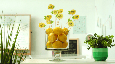 classroom wishlist lemon bowl