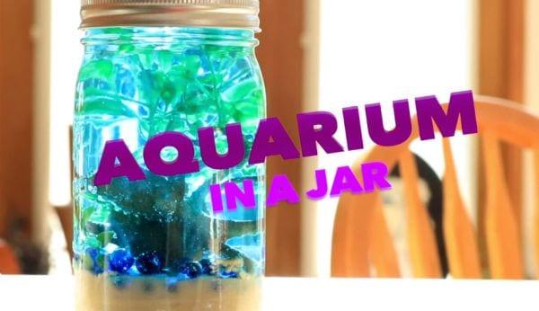 Mason Jars Aquarium DramaticParrot