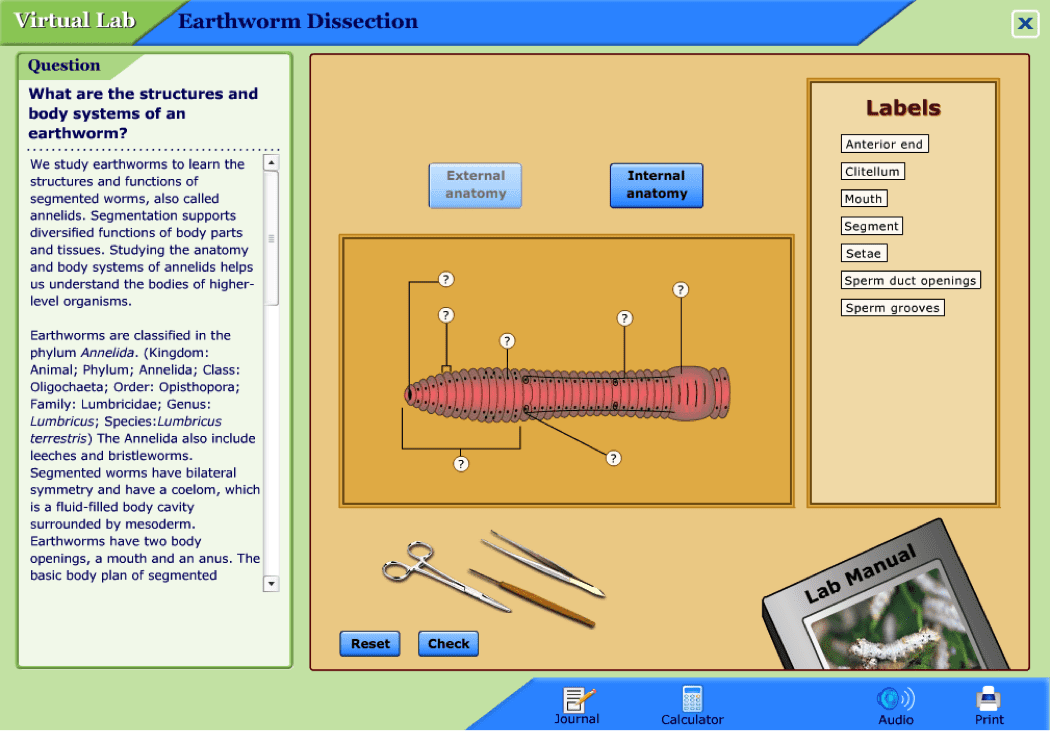 Best Virtual Lab Activities for the Classroom - WeAreTeachers