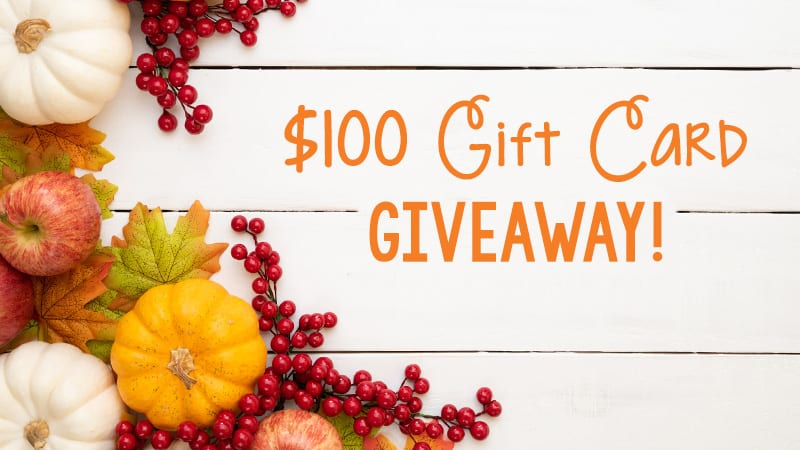 $100 Gift Card Giveaway for Michigan Teachers