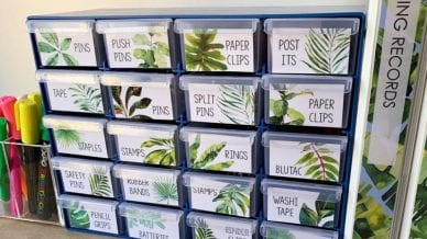 Tropical plants as labels that correspond to a bucket labeled with classroom supplies.