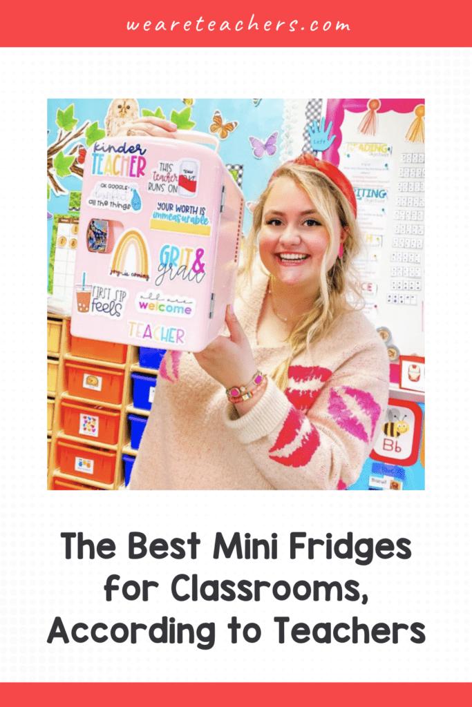 The Best Mini Fridges for Classrooms, According to Teachers