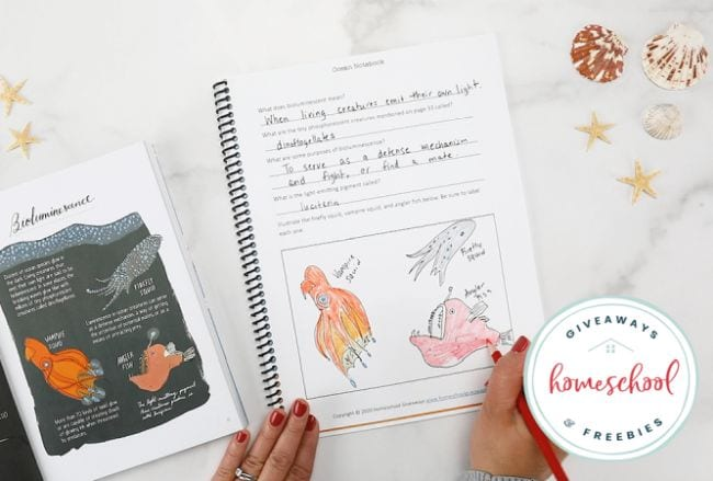 Ocean Activities Homeschool Giveaways
