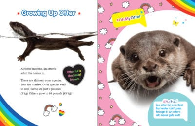 Book Pages: Otterly Adorable Otters