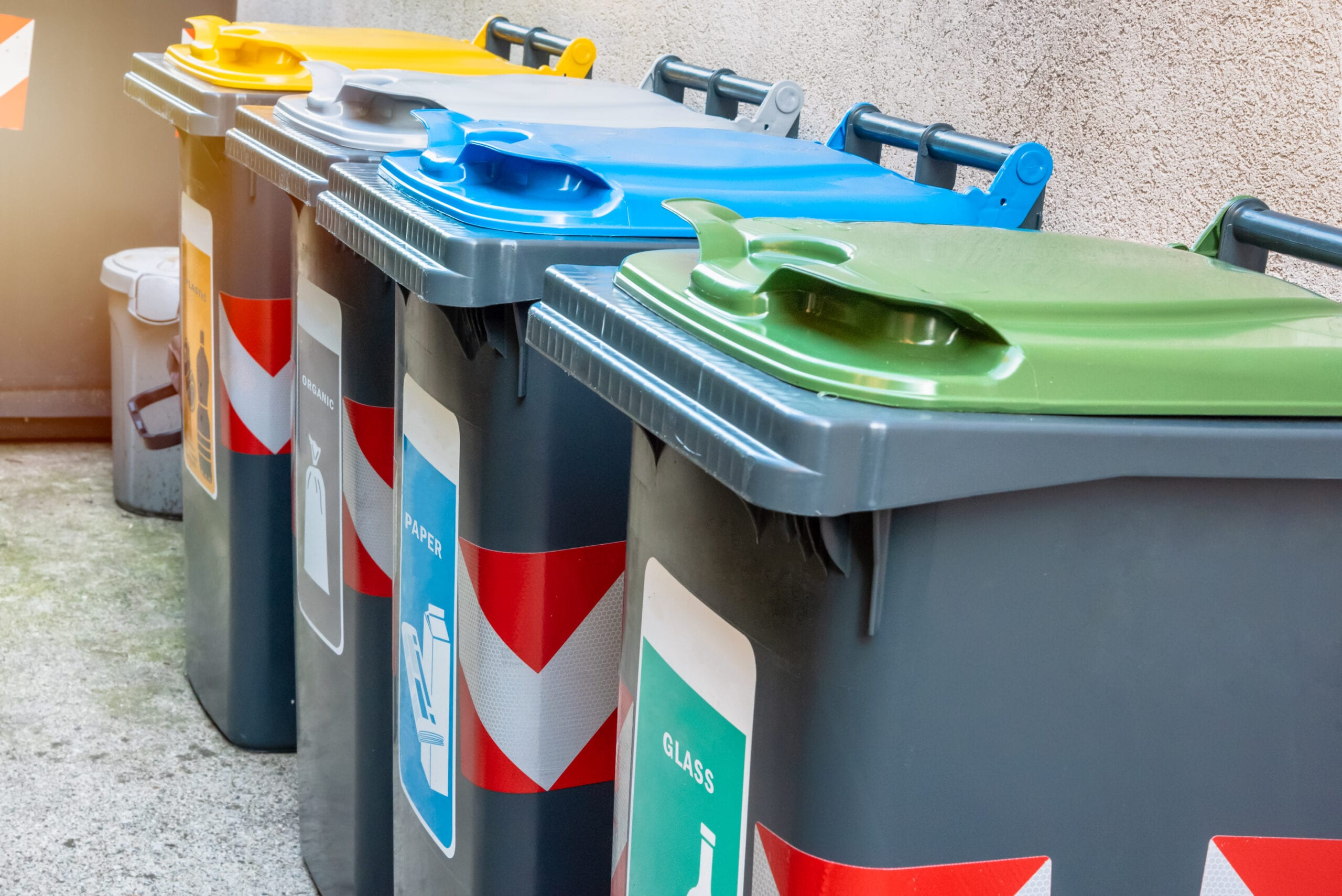 Recycling bins on the paved back yard of a house