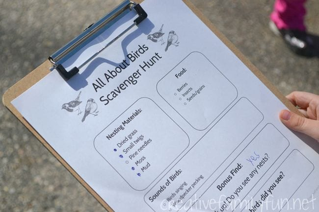 All About Birds Scavenger hunt printable on a clipboard