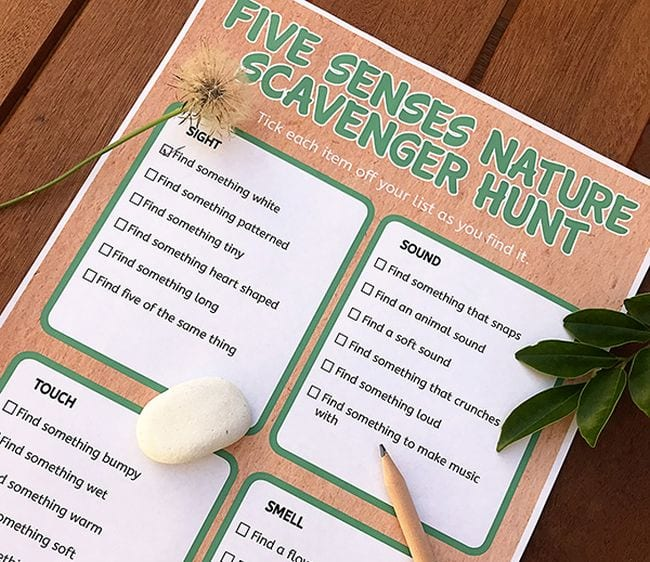 Printable Five Senses Nature Scavenger Hunt sheet with pencil, rock, leaves, and dandelion (Outdoor Science)