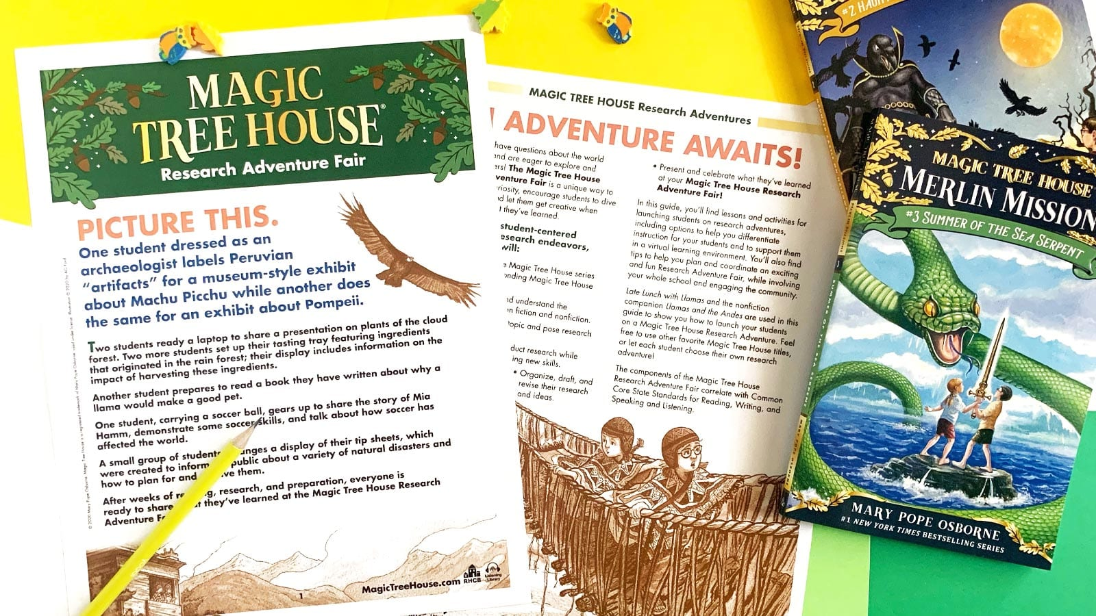 Magic Tree House guide with two books on a colored background.