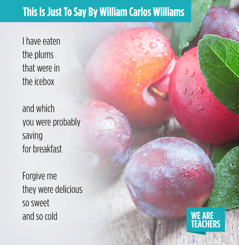 poems for middle school william carlos williams