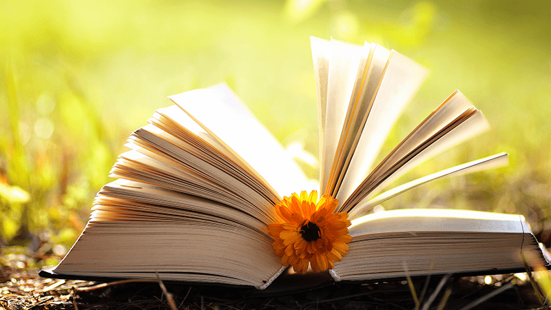 24 Must-Share Poems for Middle School and High School - WeAreTeachers