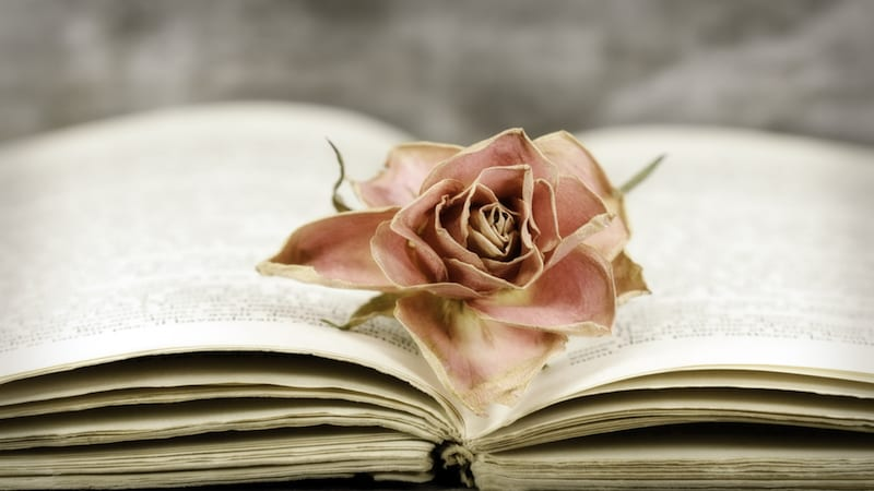 10 of Our Favorite Poems About Teaching