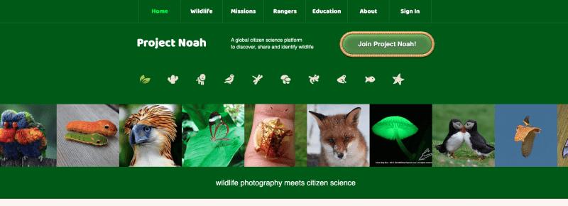 Project Noah website screengrab.