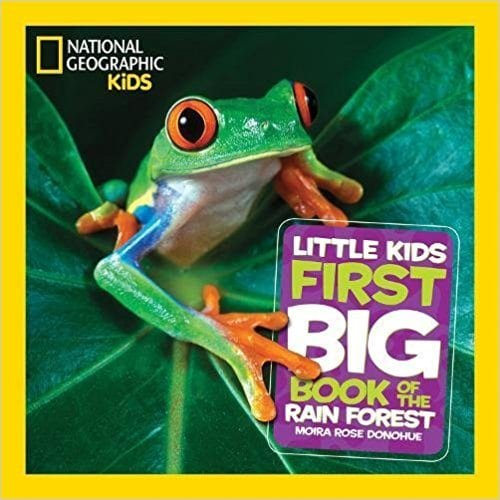Big Bugs 2 Teachers Book