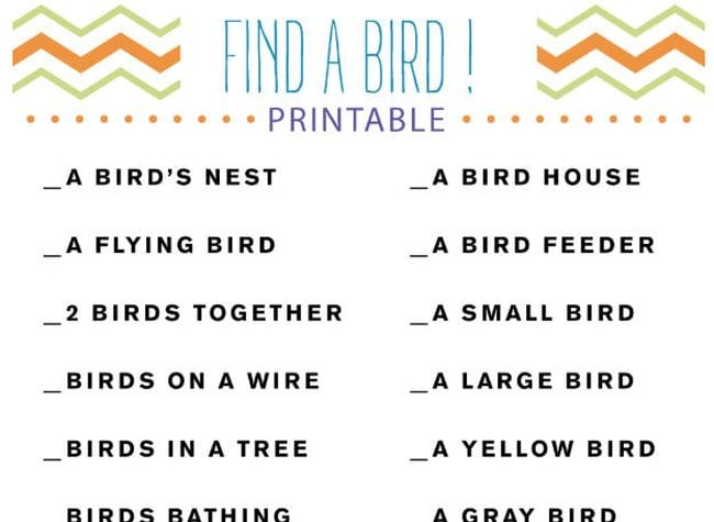 Find a Bird! Printable scavenger hunt with various bird-related items to find