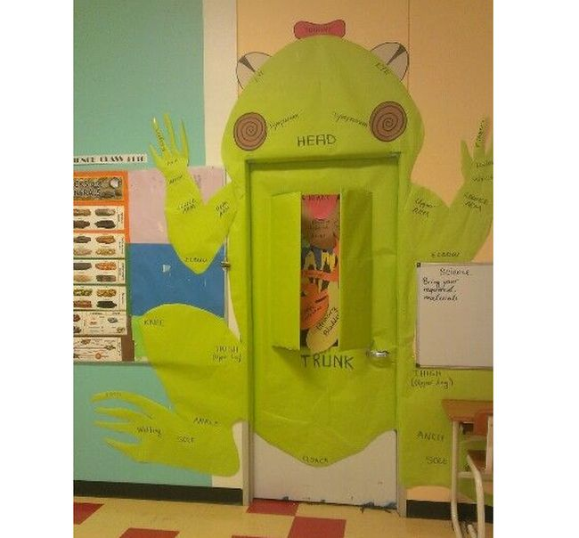 Science Bulletin Boards Frog Door Pinterest