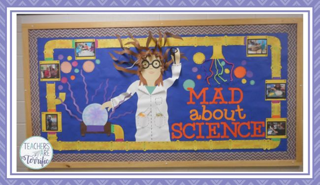 20 Of The Best Science Bulletin Boards And Classroom Decor