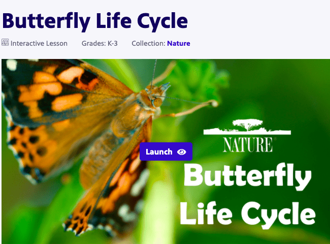 """""""Butterfly life cycle"""", image of a butterfly."""