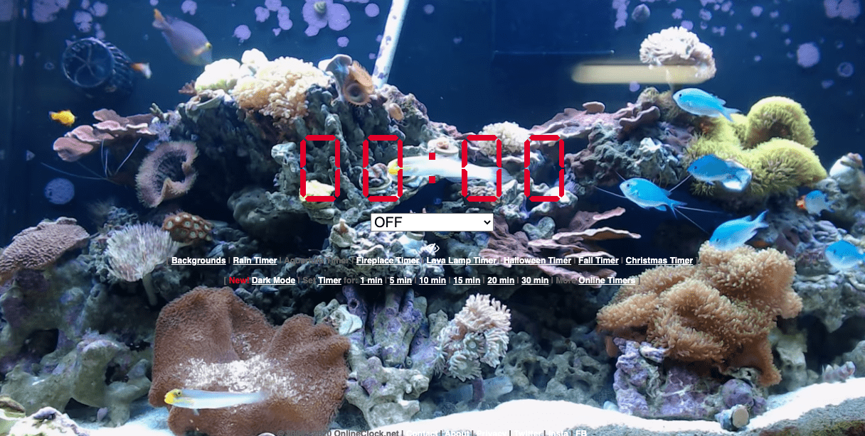 Live Aquarium Timer