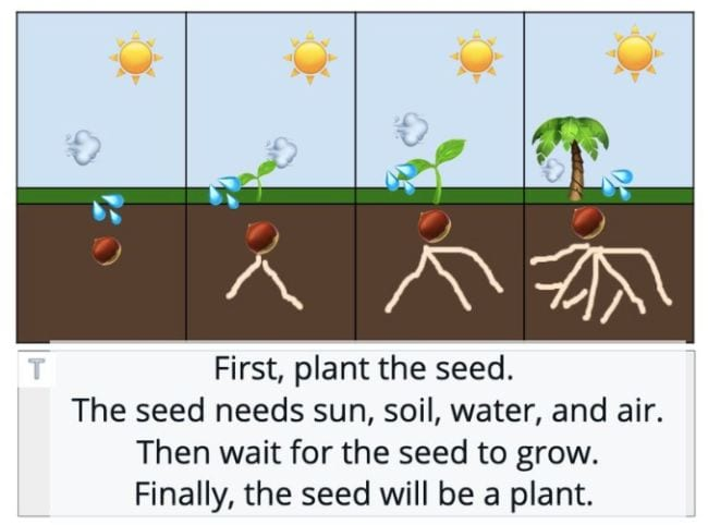 Four panels showing dirt, grass, sky, and sun, with image of seed growing into plant step-by-step