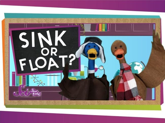 Photo showing two duck puppets with caption Sink or Float?