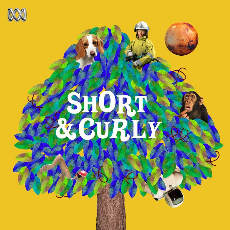 """Cover of """"short and curly"""""""