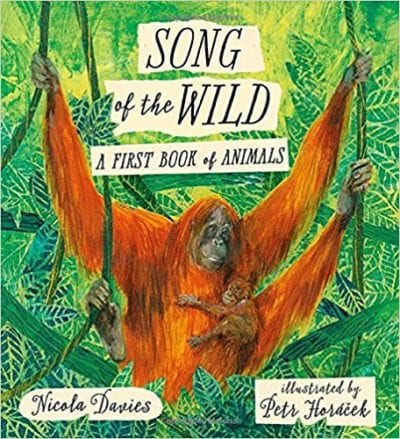 Book cover for Song of the Wild: A First Book of Animals