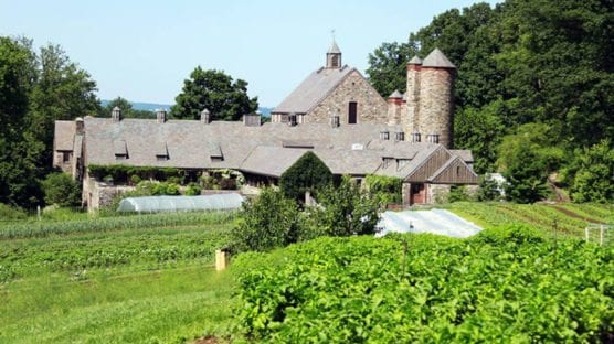 Epic Summer PD at Stone Barns