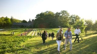 Adults walking on beautiful farm land - Free Teacher Trip