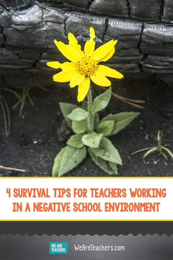 4 Survival Tips for Teachers Working in a Negative School Environment