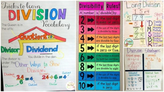 Collage of anchor charts for teaching division