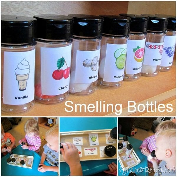 The Nose Knows - 20 Best Kindergarten Science Activities