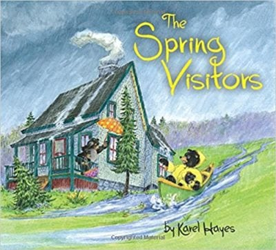 Book Cover for The Spring Visitors