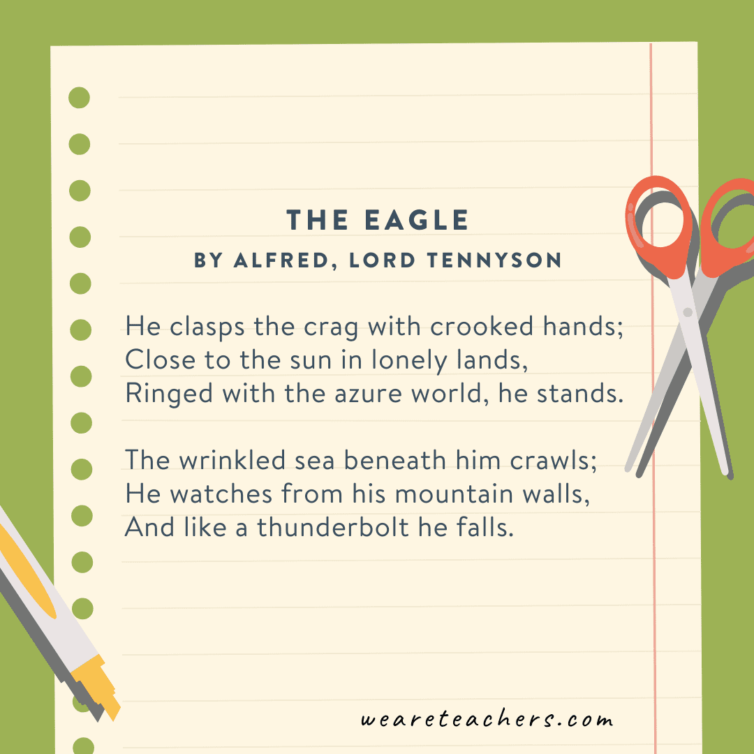The Eagle by Alfred by Lord Tennyson
