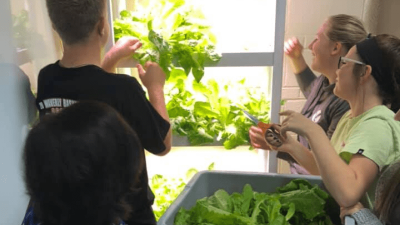 hydroponics giveaway - students tending to garden
