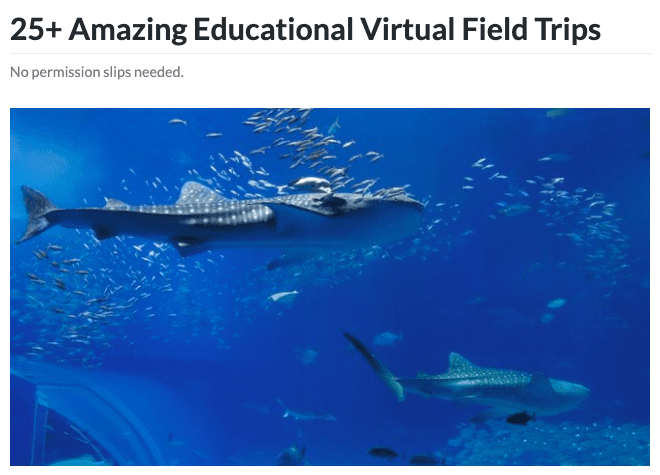 Aquarium virtual field trip header.