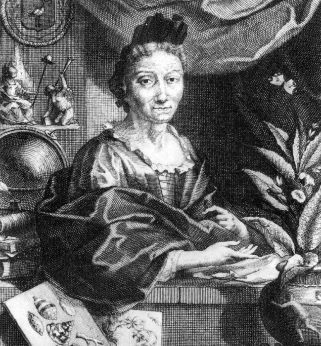 Women Scientists Maria Sibylla Merian